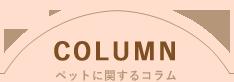COLUMN ペットに関するコラム
