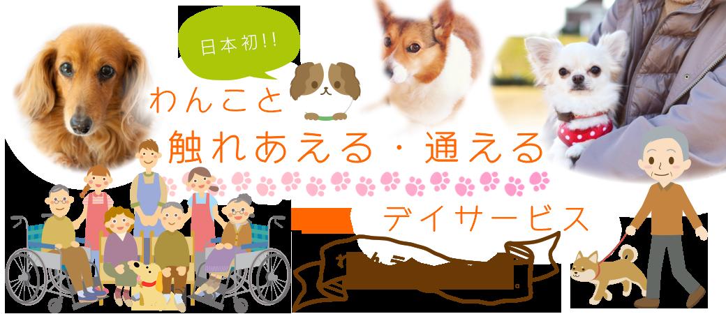 日本初!!わんこと触れあえる・通えるデイサービス「わおん デイサービス」です。