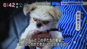 NHKおはよう日本02